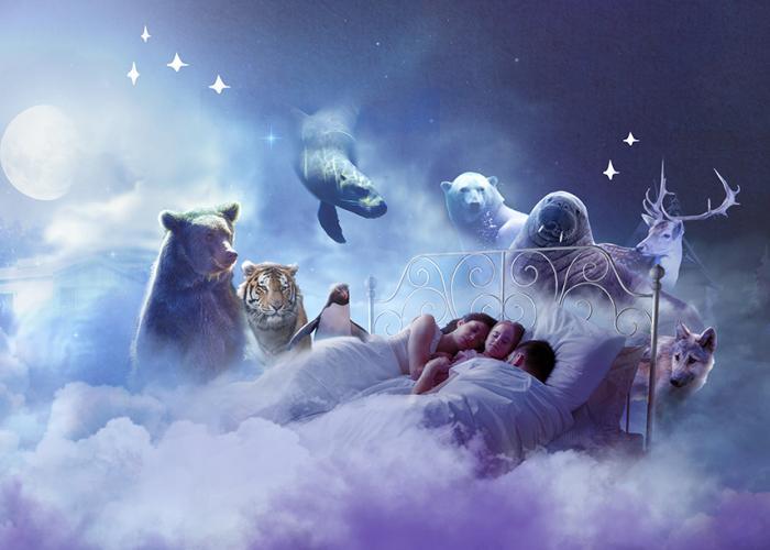 illustration de Pairi Daiza Resort (animaux et rêves)