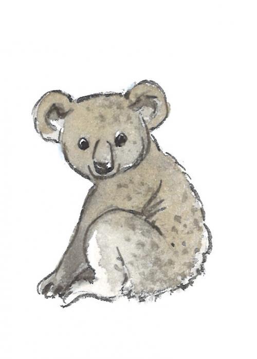 Le Koala - Une espèce « vulnérable »